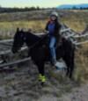 horsenguitar